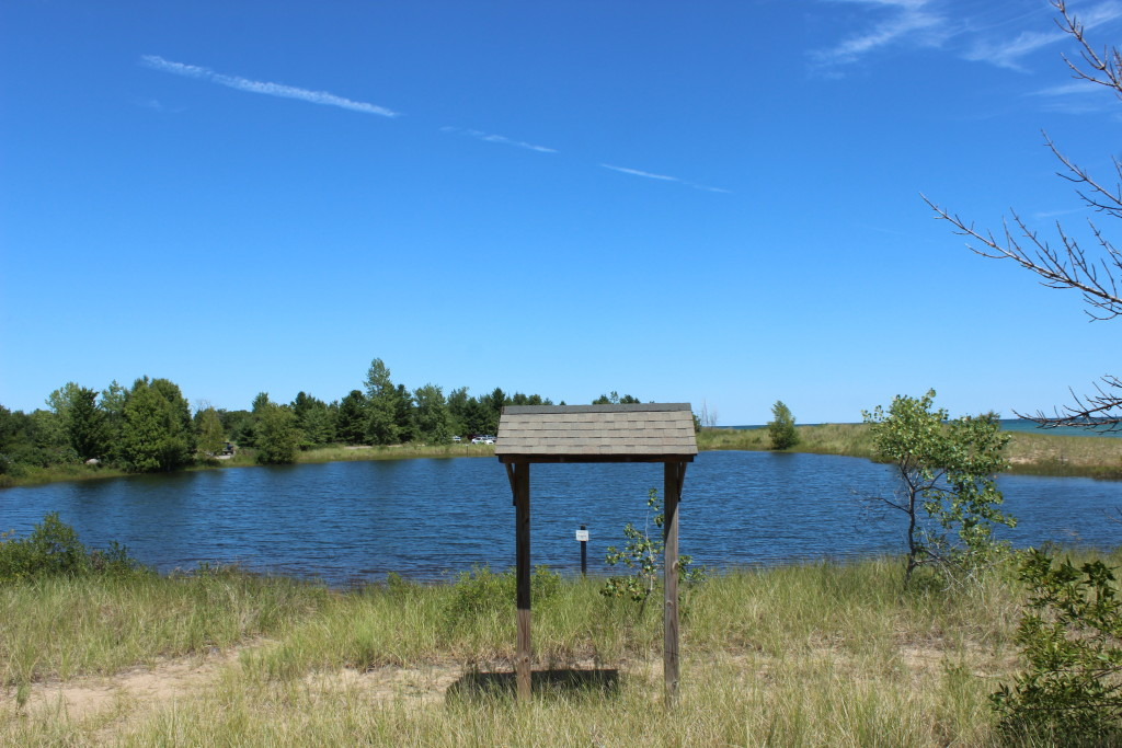 Tawas Point State Park Pond Nature Trail