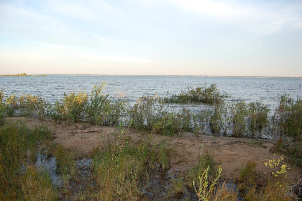 Tawas Point State Park Shoreline