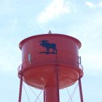 "Newberry, ""Moose Capital of Michigan"""