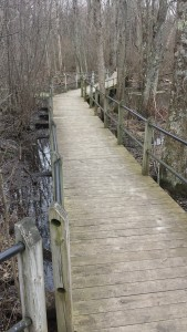 Pigeon Creek Park Holland Boardwalk Trail