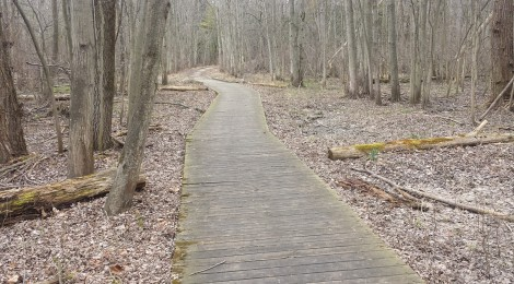 Michigan Trail Tuesday: Pigeon Creek Park, Ottawa County