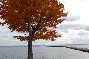 Presque Isle Harbor Breakwater Light Fall