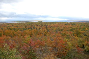 Thomas Rock Gobblers Knob Marquette Fall Color