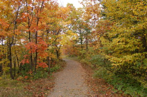 Thomas Rock Trail Marquette Fall Color Easy Path