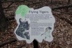 Lepard NAture Preserve Owl Information Grand Rapids MI