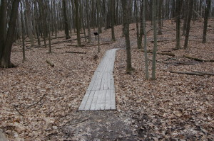Lepard Nature Preserve Boardwalk Trail Kent County MI