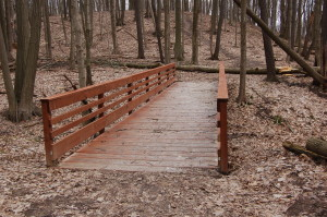 Lepard Nature Preserve Bridge 2 Caledonia Michigan