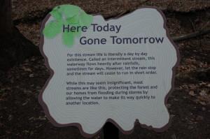Lepard Nature Preserve Intermittent Stream Kent County GR MI