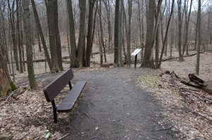 Lepard Nature Preserve Trail Benches Kent County MI