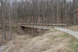 Lepard Nature Preserve Trail Bridge Caledonia Michigan