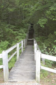 Petoskey State Park Old Baldy Trail Stairs