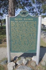 Pacific Salmon Michigan History Marker Hatchery Passport Program