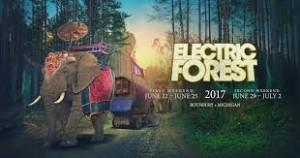 www.electricforestfestival.com