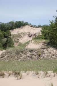 Hoffmaster State Park Sand Dunes