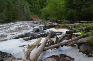 Sturgeon Falls Downstream Michigan Waterfalls