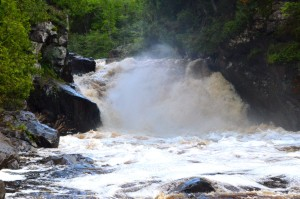 Sturgeon Falls Roaring Wilderness Waterfall Michigan