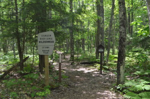 Sturgeon Falls Trail Michigan Upper Peninsula