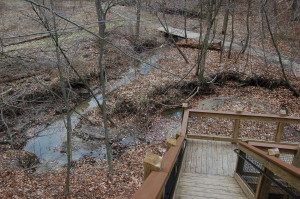 Grand Ravines Park Trail Staircase