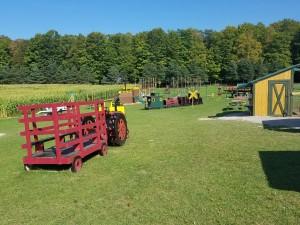 Knaebe's Playground Apple Farm