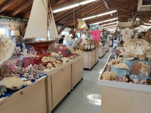 Sea Shell City Interior Gift Shop Michigan