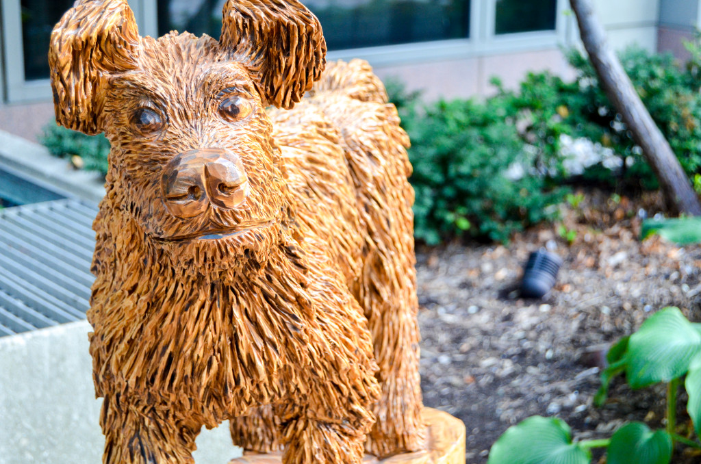 """""""Stray Dog"""" by Victor Riley, in front of the Courtyard Marriott Hotel"""