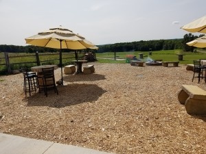 Burnt Marshmallow Brewing Outdoor Area Petoskey MI