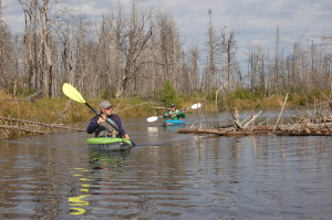 Two Hearted River Kayak Family Paddle