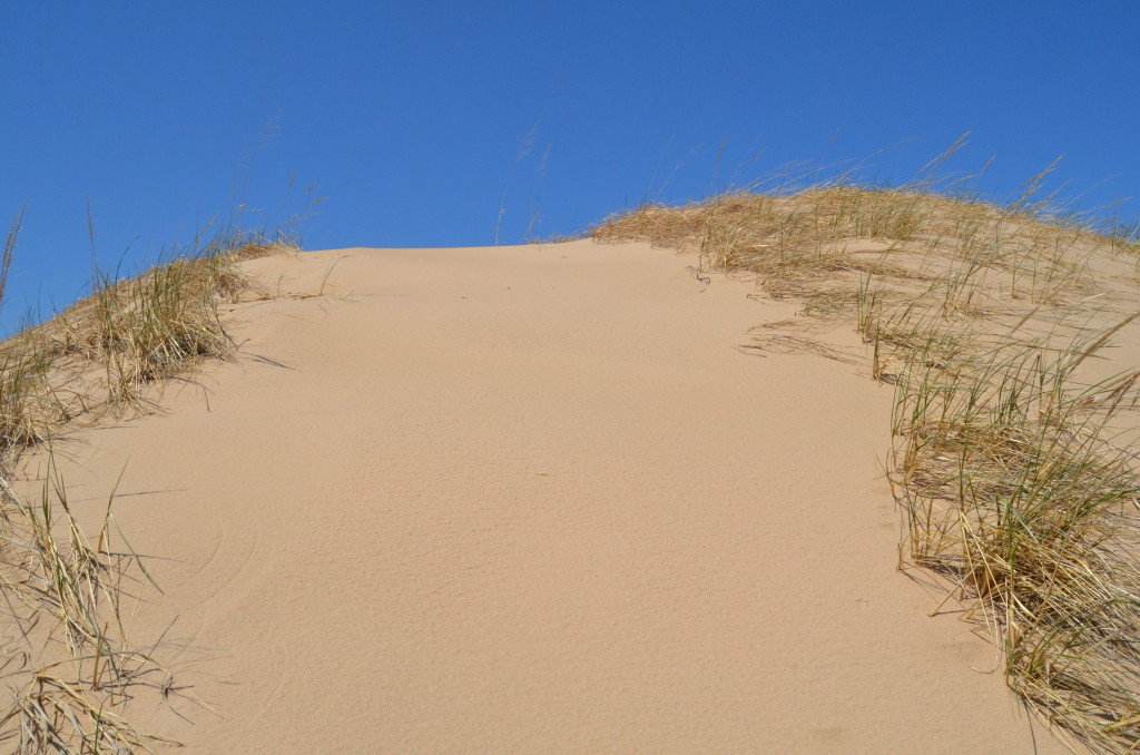 Silver Lake State Park Dune Hiking Ridge Michigan