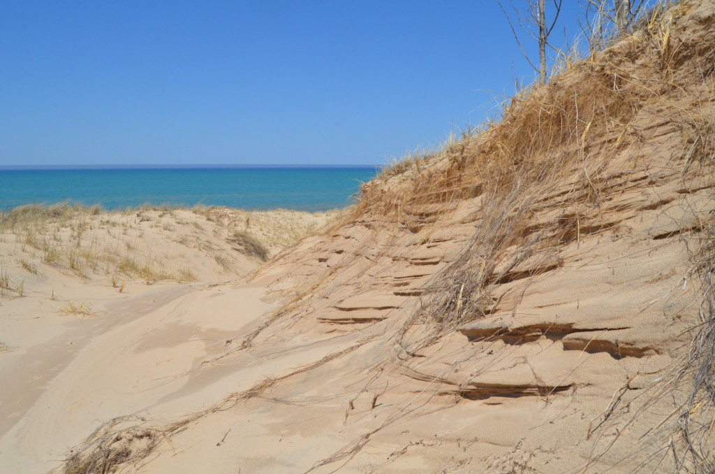 Silver Lake State Park Lake Michigan Shoreline Dunes
