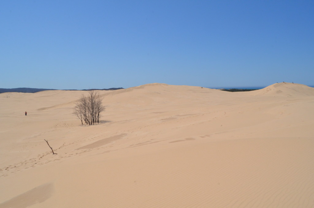 Silver Lake State Park MI Dune Hiking Area