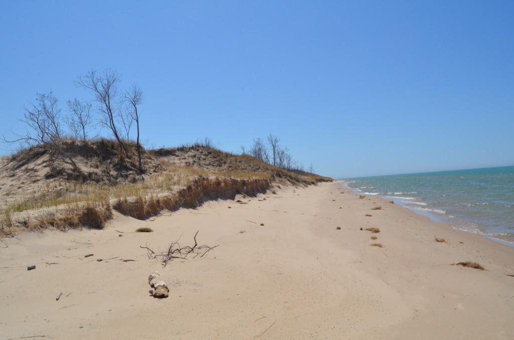 Silver Lake State Park Michigan Lake Shoreline Oceana County