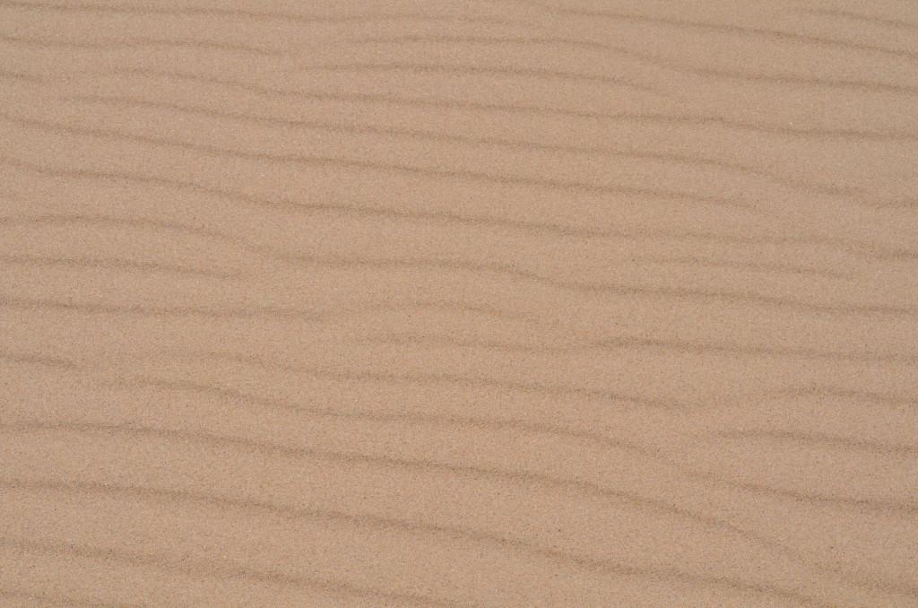 Silver Lake State Park Sand Detail Michigan