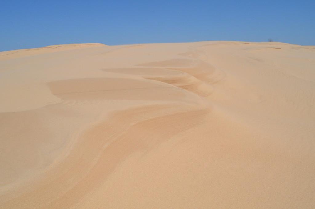 Silver Lake State Park Sand Dunes Hiking