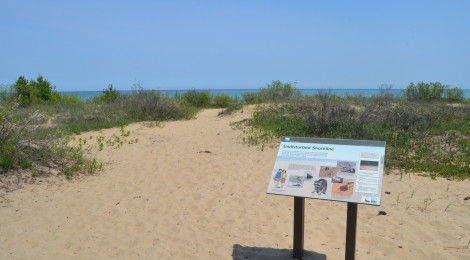 Negwegon State Park - Beauty and Seclusion on the Lake Huron Shore