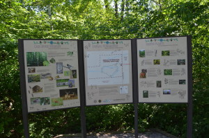 Sanilac Petroglyphs Information Signs Michigan State Park