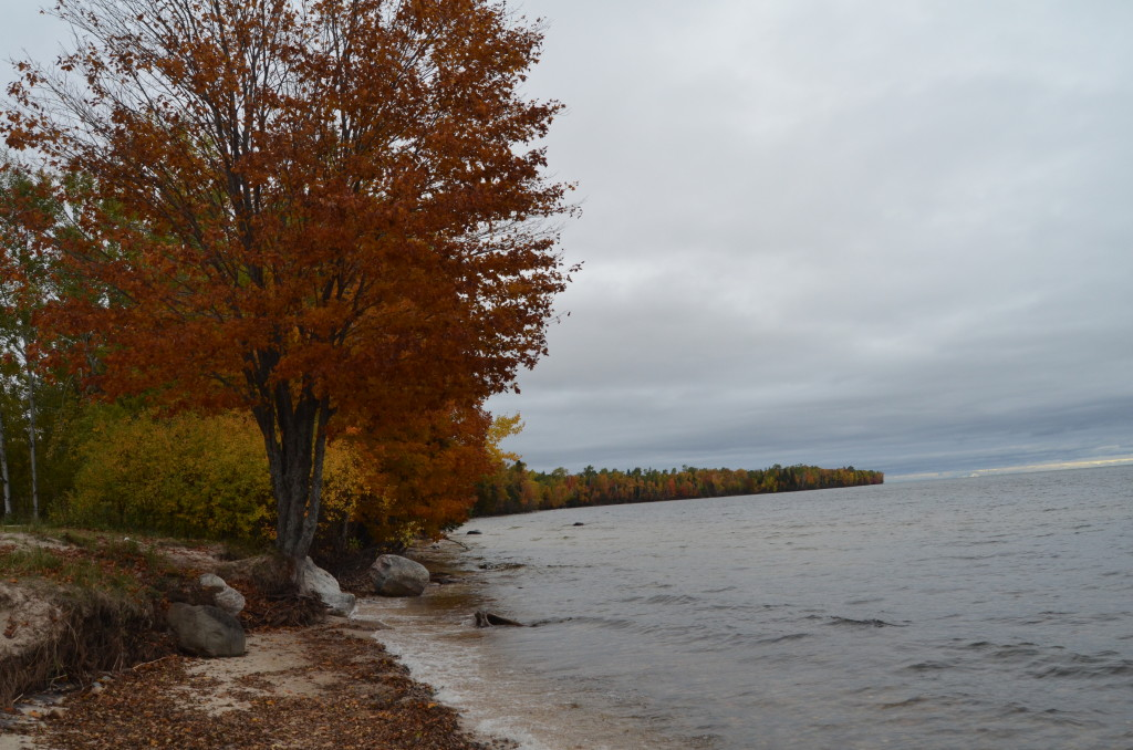 Fall Color Whitefish Bay Scenic Byway Lake Superior Maple