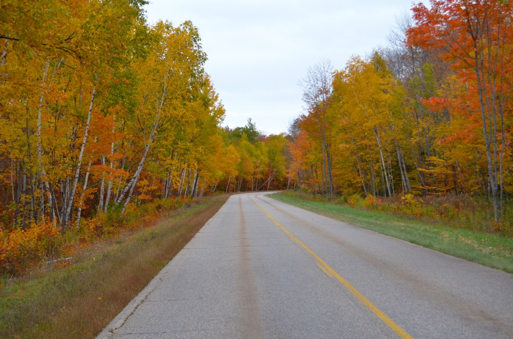 Fall Color Whitefish Bay Scenic Byway Michigan