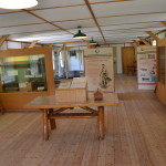 Photo Gallery Friday: Michigan Civilian Conservation Corps Museum, North Higgins Lake State Park