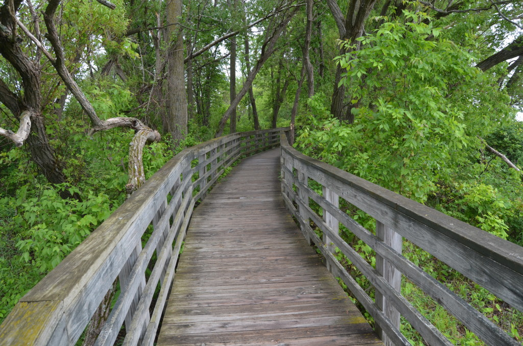 Bay City State Park Hiking Trail Boardwalk Michigan