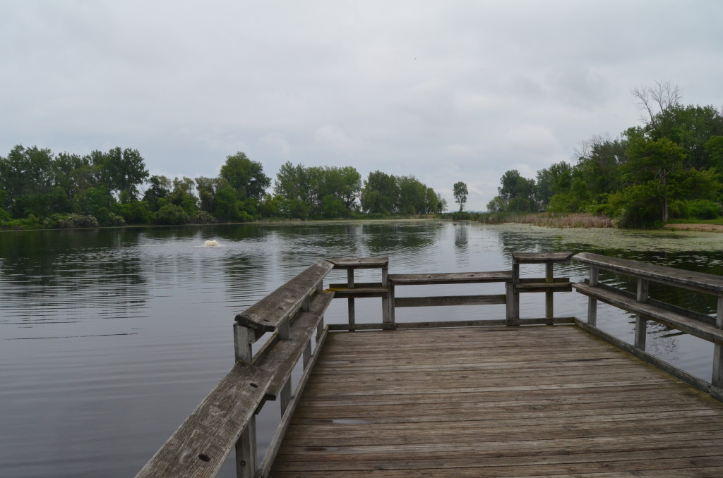 Bay City State Recreation Area Fishing Pond Deck Michigan
