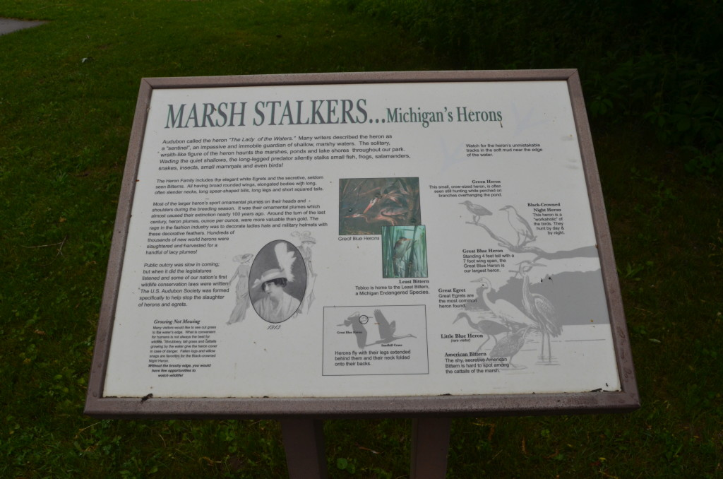Bay City State Recreation Area Marsh Stalkers Michigan