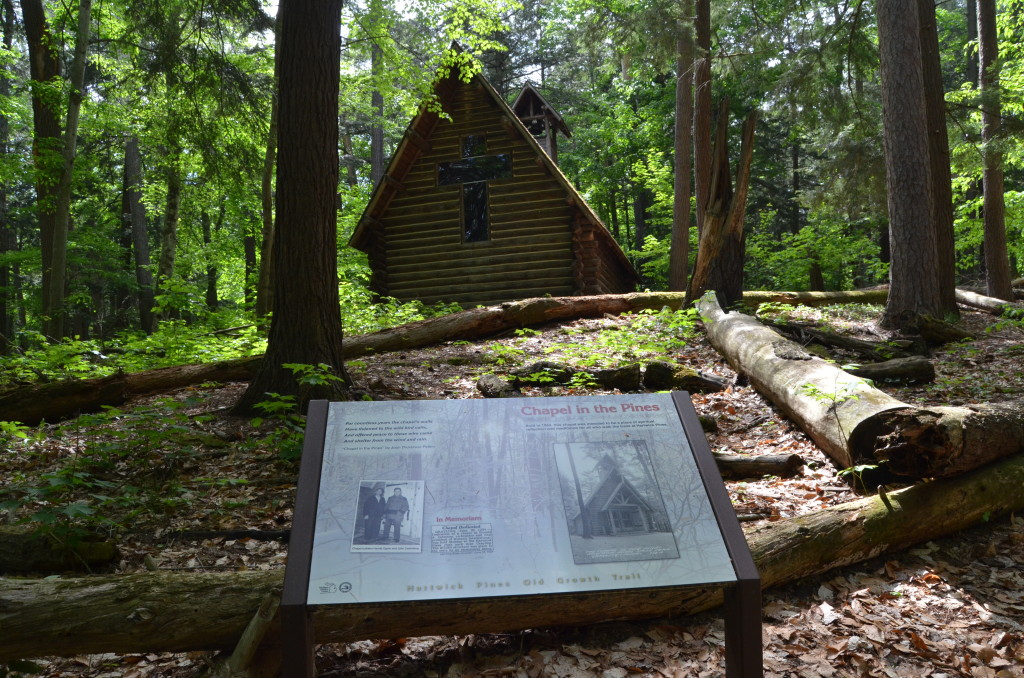Hartwick Pines State Park Chapel in the Pines Sign