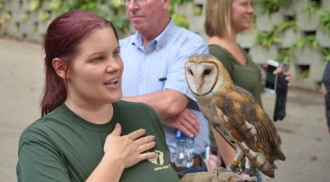 Rock Roar & Pour at John Ball Zoo: An Adults-Only Evening of Beer, Music, and Animal Encounters