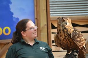John Ball Zoo Rock Roar & Pour Owl Presentation