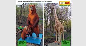 Brick Live Bear Giraffe