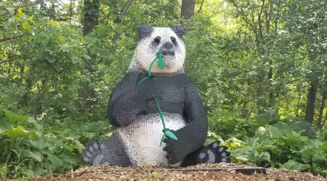 John Ball Zoo Getting BrickLive Animal Exhibit for 2020 Season