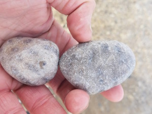 Petoskey Stones Glen Haven Beach Sleeping Bear Dunes