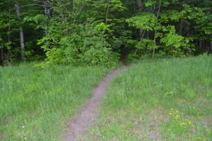 Powderhorn Falls Trail Michigan Bessemer
