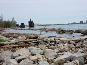 Blue Water River Walk Shoreline Port Huron