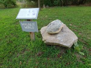 Leik Grove Walnut Rock Portland MI
